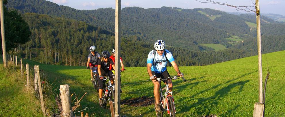 Biken, Wandern, Skifahren, Kultur, Tradition ... uvm.